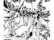 dessin jungle
