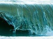 mers européennes sont encore loin état écologique