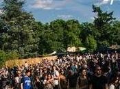 Guide Festivals