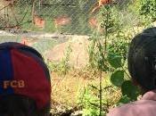 Notre visite Sables d'Olonne #vendée #zoo #LesSablesdOlonne