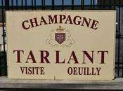 Visite Champagne domaine Tarlant