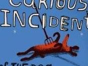 Mark HADDON bizarre incident chien pendant nuit