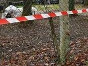 Grippe aviaire l'étrange communication gouvernement