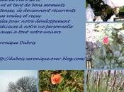 Gratitude Acrostiche Véronique Dubois