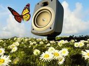 Maigrir avec musique! Vraiment?