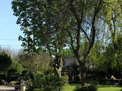 Petit tour jardin...