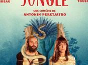 jungle Découvrez bande annonce (vidéo)