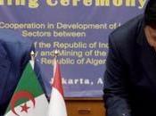 Algérie-Indonésie: mémorandum d'entente dans secteur industriel