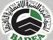 Banque arabe développement économique Afrique (BADEA) l'assaut investisseurs arabes