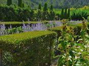 jardins Joanis