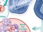 #thelancet #asthmesévère #benralizumab #éosinophilie #agonisteβ2 Efficacité sécurité benralizumab chez patients atteints d'asthme sévère contrôlé l'inhalation corticostéroïdes agonistes longue durée d'action (SIROCCO) :...