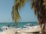 Gran Roque plage beach
