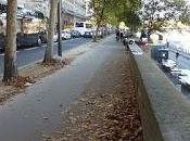 Piétonniser voies berge Paris: Faire notre bo-bonheur