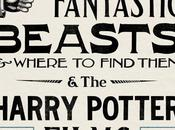 Exposition Graphic Fantastic Beasts & Where Find Them Harry Potter Films