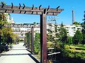 Joli parc Passy découvert hier lors d'un saut dans 16eme avec tour Eiffel #paris #paris16 #eiffeltower #toureiffel #iloveparis #parismaville #parismonamour #igersparis #instaparis #parisienne #park #parc #garden #jardin #sunny #autom...