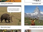 monde animal anime mots