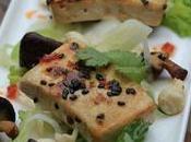 différents types tofu