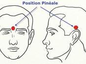 Activation glande pinéale battements binauraux www.forcemajeure.com