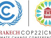 enjeux COP22 suite élections