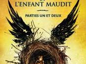 Harry Potter l'enfant maudit