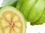 fruit Garcinia Cambogia: bienfaits pour perte poids