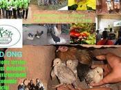 AJEDD IRETI projet d'AJEDD Association Jeunes Environnementalistes pour Développement Durable parrainage d'orphelins