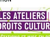 FORMATION ateliers droits culturels