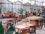 café Haarlem