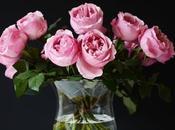 langage fleurs