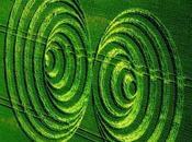 masses: forces nucléaires vibrations électromagnétiques
