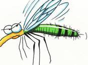 karma moustique