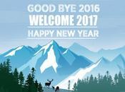 Bilan l'année 2016