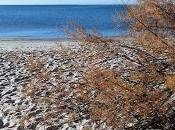 traces plage hiver, travail photo marques laissés passage Senaq