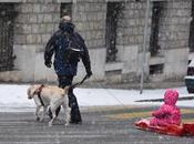 Première neige Genève