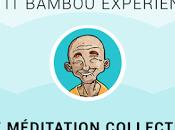 Petit Bambou Expérience
