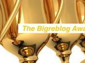 Bigreblog Awards 2016