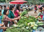 Maigrir Thaïlande Panorama diétético-gastronomique