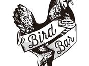 Bird nouveau concept Notre-Dame