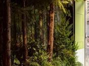 maison super green signée Pantone Airbnb