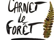 Exposition Prix Espace Beaurepaire Carnet Forêt
