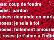 Valentin, combien offrir roses