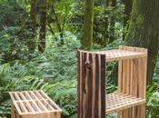Second Nature, gamme mobilier Chialing Chang