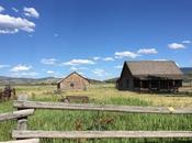 petite maison dans prairie