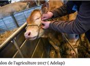 Salon l'agriculture 2017