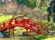 bout Japon dans ville rose