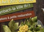 Pierres Vins Granite 2017 journée Bienheureux