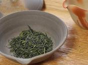 Gyokuro Uji-Shirakawa, cultivar Samidori