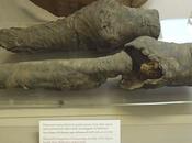 jambes momifiées appartiendraient reine égyptienne Néfertari