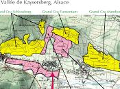 Domaine Paul Blanck (68) Kientzheim