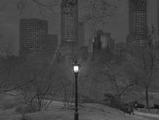 Insomniaque, photographie Central Park seul dans nuit
